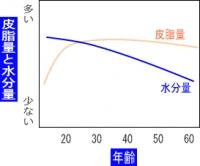 男性の皮脂量と水分量の違い